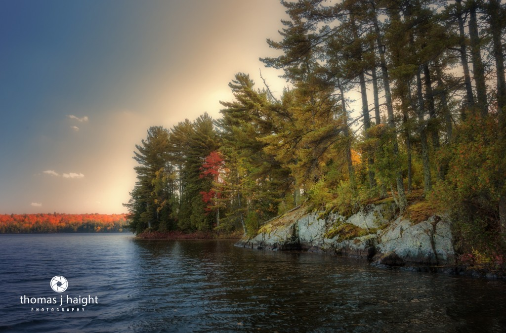 Morning Shoreline at Perch Lake